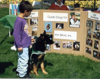 Guide Dog Display