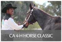 4-H Horse Classic button