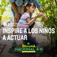 2. Spanish National 4-H Week - Garden