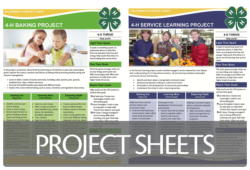 4-H Project Sheets