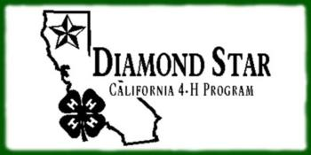DiamondStarLogo