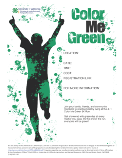 Color Me Green 5K Run flyer template-English