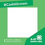 #Ca4HGrown social media frame