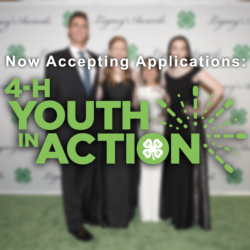 Youth in Action Awards are open!