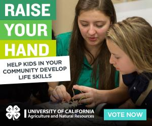 Raise your hand-help kids in your community gain life skills