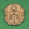Judging pin
